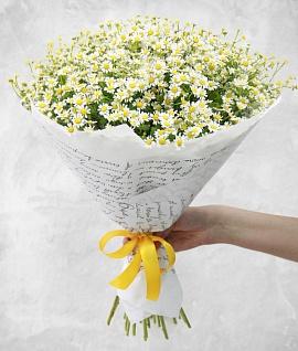 Недорого салон цветы с доставкой спб, лилии букет чтобы долго стояли