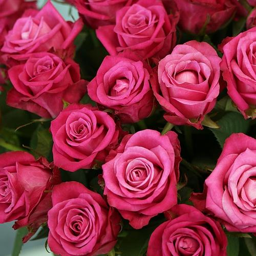 Купить цветы Букет Малиновые розы россыпью (Россия) в интернет магазине в  СПб
